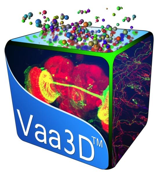 Vaa3D